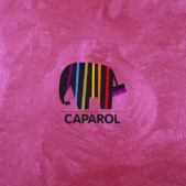 caparol_wall